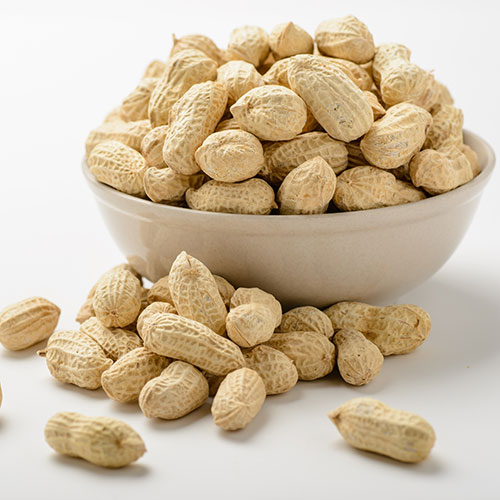 Bulk Salted in Shell Peanuts: 25 lbs